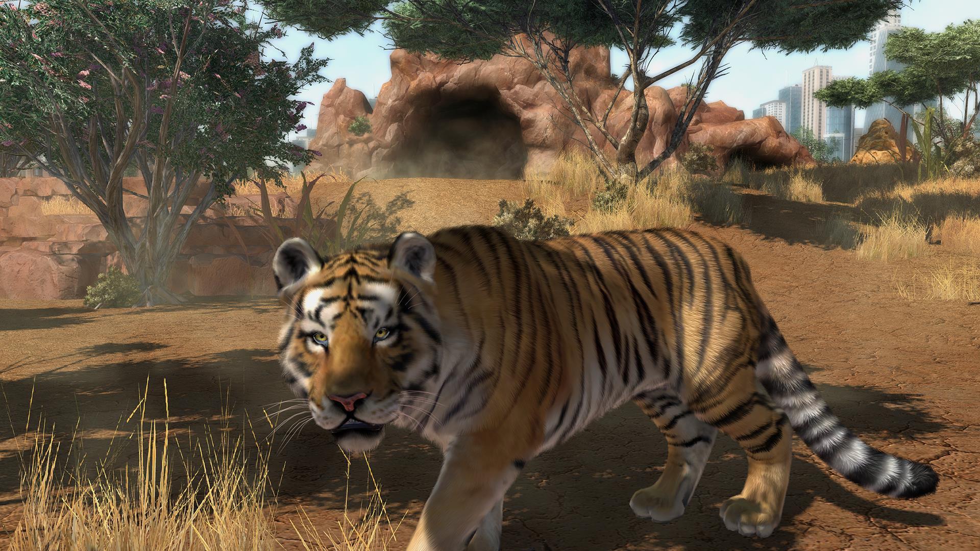 Zoo Animal Games