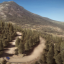 Dependable in DiRT Rally