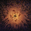 Comboing My Way Through in Ryse: Son of Rome