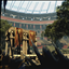 Weekend Gladiator in Ryse: Son of Rome