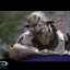 Skulltaker Halo 2: Mythic in Halo: The Master Chief Collection (CN)