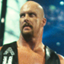Stone Cold said so in WWE 2K16 (Xbox 360)