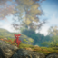 Walkabout in Unravel