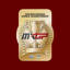 World Championship in MXGP2 - The Official Motocross Videogame