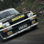 Owned in DiRT Rally