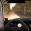I Am the 5% in DiRT Rally