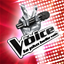 The Voice (FR) achievements