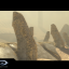 Waypoint in Halo: The Master Chief Collection