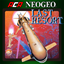 ACA NEOGEO LAST RESORT achievements