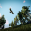 Hawk Eyes in Hunting Simulator