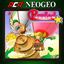 ACA NEOGEO PUZZLED achievements