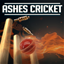 Ashes Cricket achievements