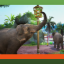 Upgrading is for Winners in Zoo Tycoon: Ultimate Animal Collection