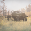 Rescue Mission in Spintires: MudRunner