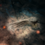 Feathered Friend in Far Cry Primal